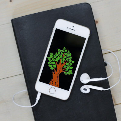 Как посадить дерево по Интернету?