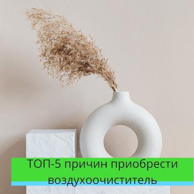 ТОП-5 причин приобрести воздухоочиститель