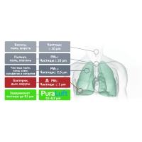 Ионный очиститель воздуха PuraLuft ARP-GF4.80H